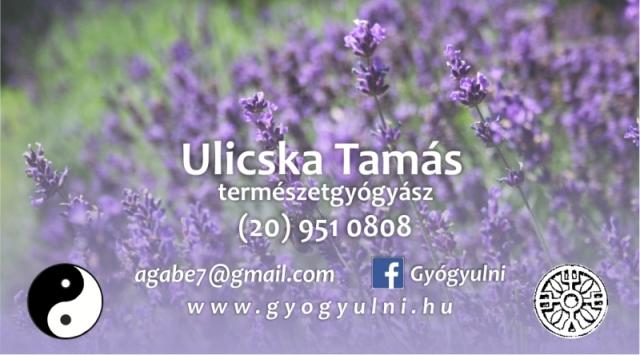 Elérhetőség - Névjegykártya - Ulicska Tamás - www.gyogyulni.hu