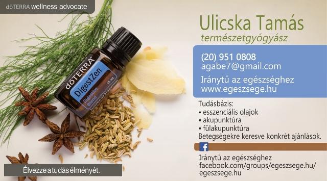 Elérhetőség - Névjegykártya - Ulicska Tamás - www.egeszsege.hu