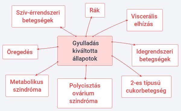 gyulladas-kivaltotta-allapotok-hu-2-600x368
