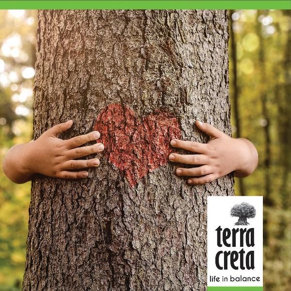 terra-creta-3